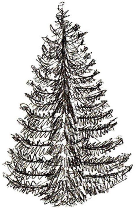 draw realistic christmas trees how to draw a tree draw step by step