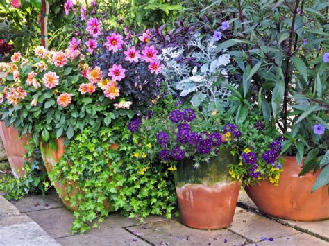 35 Patio Potted Plant And Flower Ideas Creative And Potted Trees For Patio