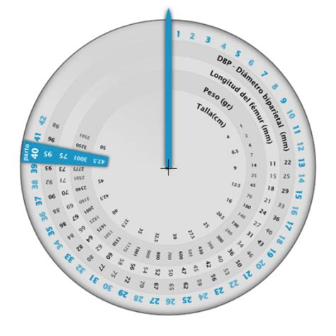 Calendario Gestacional Gestograma De Embarazo