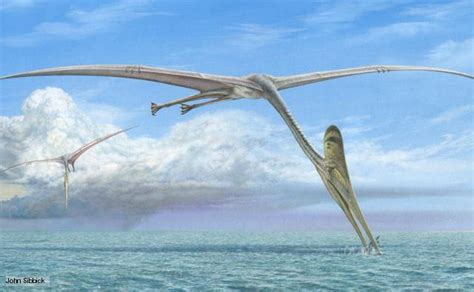 uccelli non volanti paleostories i predatori della preistoria ep 6 rettili