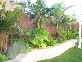 curvy retaining wall with tropical plants mk landscape design