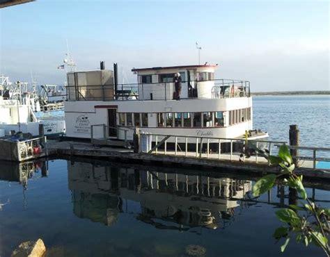 morro bay boat tours chablis cruises morro bay ca top tips before you go