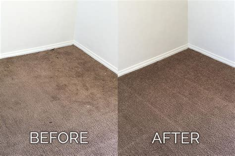 upholstery cleaning palm springs dan s carpet cleaning dan s carpet cleaning palm