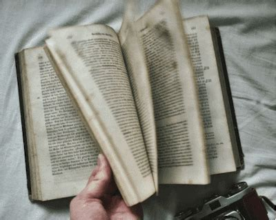 the magic of traveling follow the locals books antique book gif