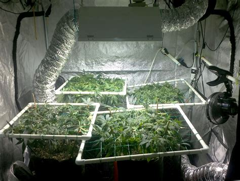 grow room setup grow room setup diagram grow get free image about wiring diagram