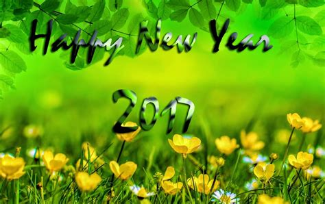 flower hd images with happy new year green nature happy new year 2017 widescreen hd wallpapers 9to5animations