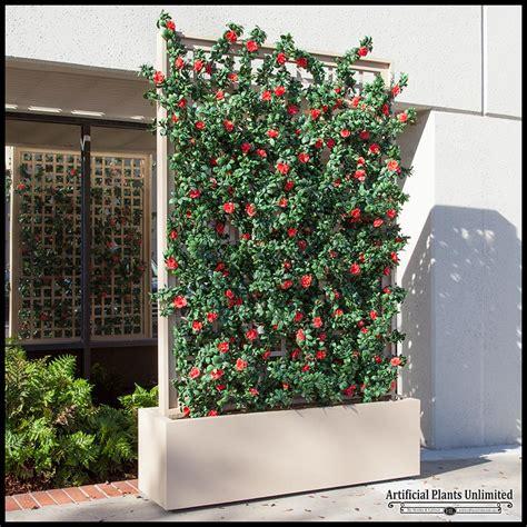 backyard dividers azalea trellis space divider in fiberglass planter 72in l