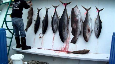 galveston party boats fishing galveston party boats inc tuna fishing 1 jan 29 30 2011