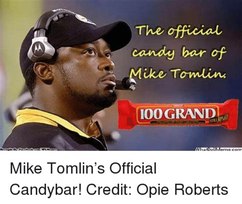 Mike Tomlin Memes - 25 best memes about mike tomlin and nfl mike tomlin and
