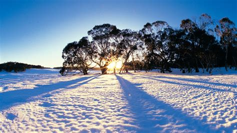 best places to see snow in australia tourism australia
