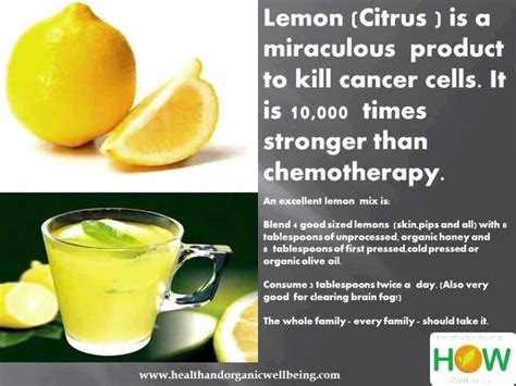 Smoothies To Help Detox From Chemo And Brain Surgery by 15 Best Smoothies For Chemo Images On Healthy