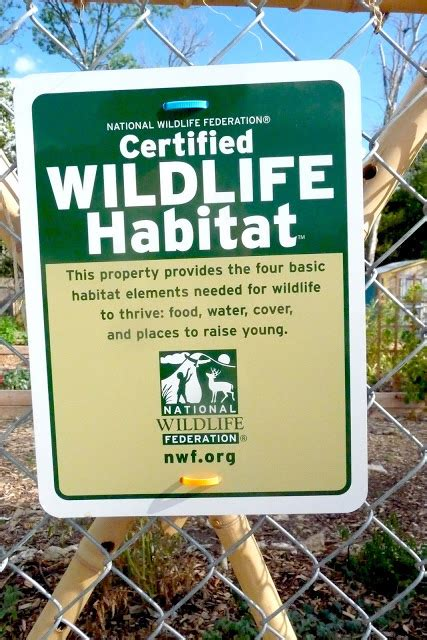 certified backyard habitat ut gardening committee nwf wildlife habitat certification