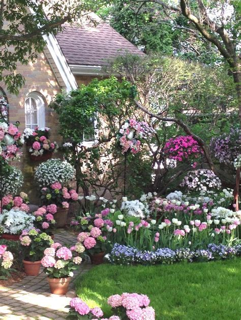 spring flower garden perfect spring garden pictures photos and images for