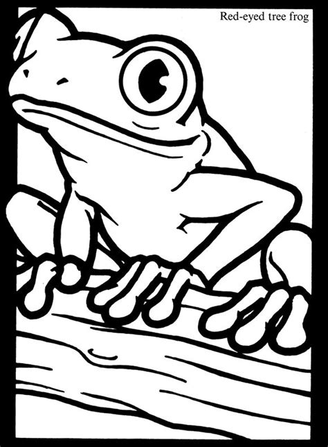 glass frog coloring page frogs stained glass coloring book dover publications