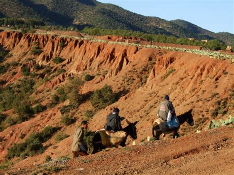 photo gallery morocco tour guides club promoting marrakech adventure morocco tour guides club promoting