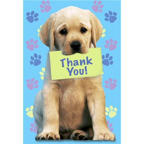 you puppies puppy thank you pictures to pin on pinsdaddy