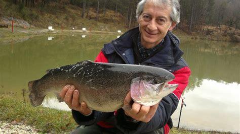 Free Kitchen Cabinets trota 5 kg lago verde pesca alla trota carpa storione