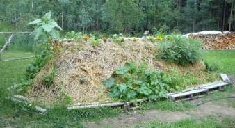 Benefits Of A Raised Garden Bed - the many benefits of hugelkultur permaculture magazine