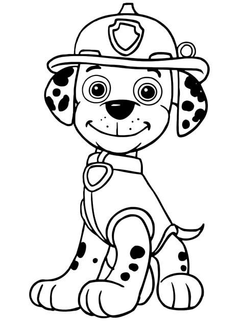 paw patrol breeds paw patrol marshall the dalmatian breed is a firedog