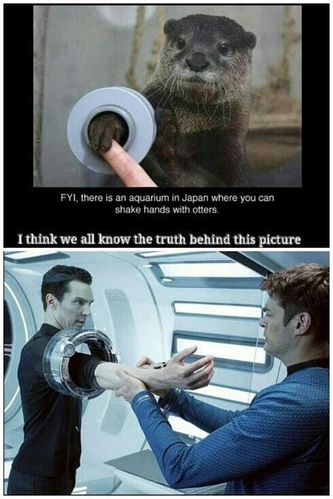 Benedict Cumberbatch Otter Meme - lol love the benedict otter memes star trek