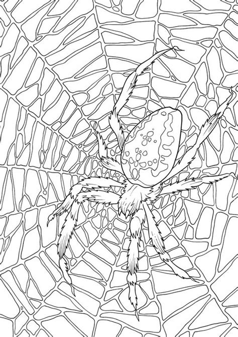 very big colouring and 140956651x spider free coloring pages