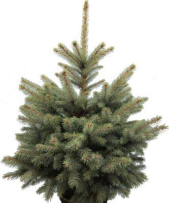 top 28 weihnachtsbaum k 227 nstlich kaufen 220 ber 1 000
