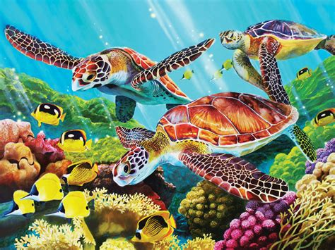 colorful turtle wallpaper molokini hawaii tourist destinations