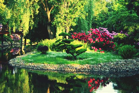 imagenes de jardines japoneses contemplar un jard 237 n japones blogdepelusita