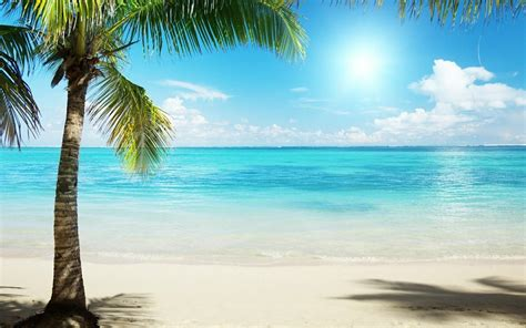 wallpaper free beach scenes tropical beach backgrounds wallpaper cave