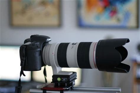 7d mounted on a 70 200 f/2.8 is mkii: denoir: galleries