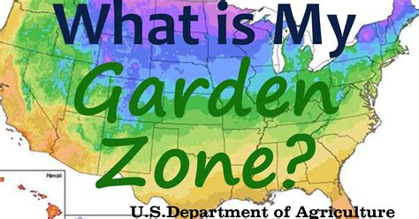 what is my gardening zone what is my garden zone using the usda hardiness map