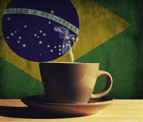 Brazilian coffee co ops expect large harvest   Co operative News