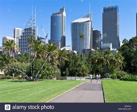 Royal Botanic Gardens Parking Dh Royal Botanic Gardens Sydney Australia Park Path Central Stock Photo Royalty Free