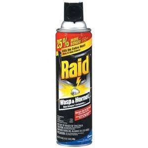 Bed Bugs Fogger Raid Wasp Amp Hornet Killer 17 5 Oz Walmart Com