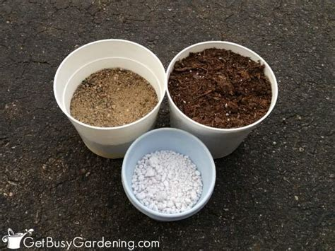 diy succulent potting soil with recipe