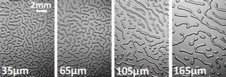 pattern formation in a thin solid film with interactions john m maloney research interest thin film patterns
