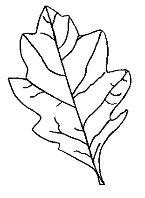 autumn leaf outline cliparts.co