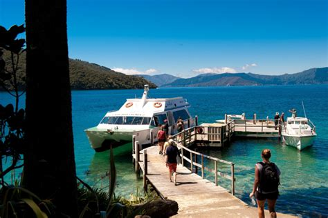 tours mail picton s mail boat delivery run marlborough sounds