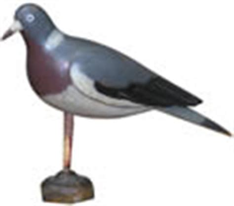 Stool Piegon by Stool Pigeon The Meaning And Origin Of This Phrase