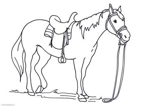 coloring pages of animals bestofcoloring com