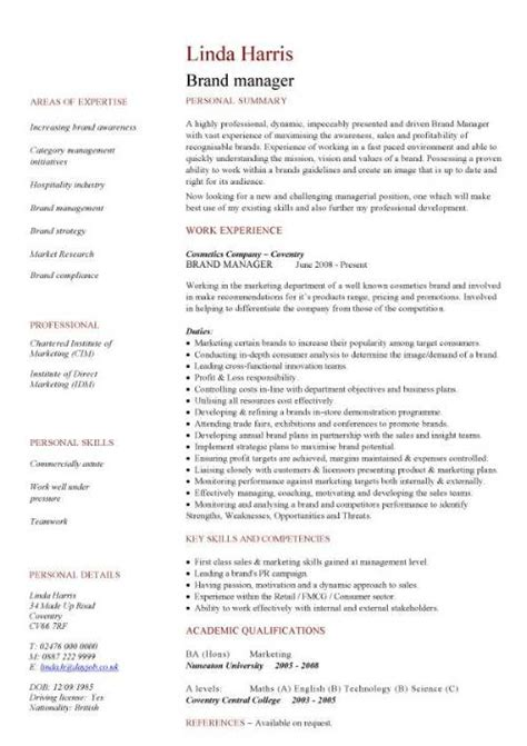 Cv Management by Management Cv Template Managers Director Project
