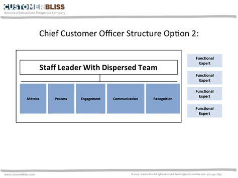 Chief Customer Officer by How To Build A Cx Structure To Influence Change And Drive