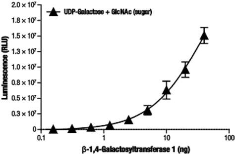udp glo™ glycosyltransferase assay