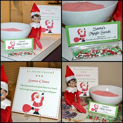 elf on the shelf magic seeds free printable elf brings back quot santa s magic seeds quot to plant in sugar