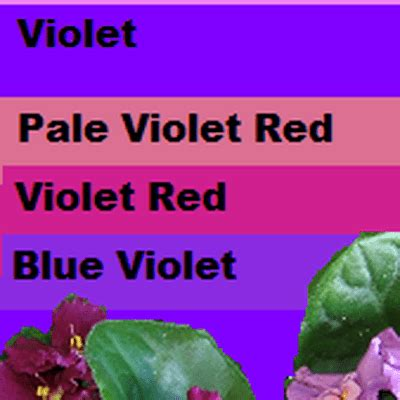 the color purple book apa citation a guide to the color purple and its use in publishing