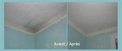 Comment Lessiver Un Plafond 4525 by J Enduis Tu Enduis Nous Ensduisons M 233 Tamorphoser