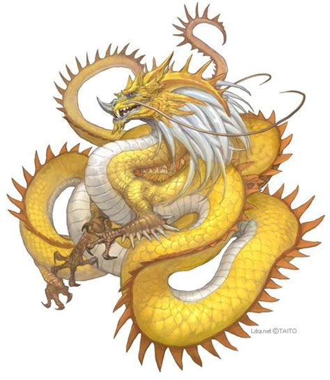 golden dragon tattoo master of mystical is the oldest and