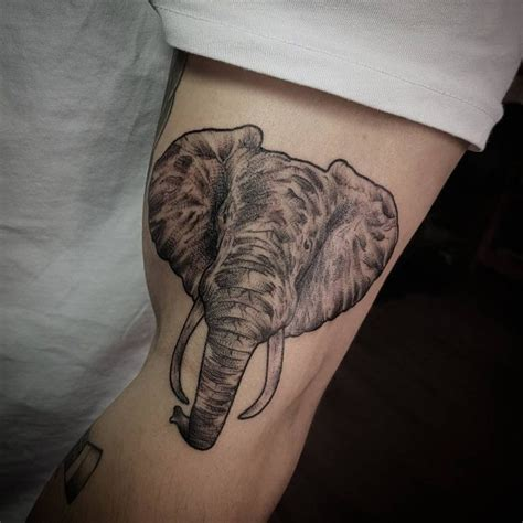 elephant tattoo crotch 125 cool elephant tattoo designs deep meaning and symbolism