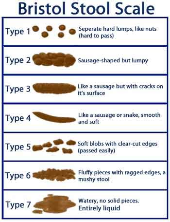 Bristol Stool Chart For by The Scoop On