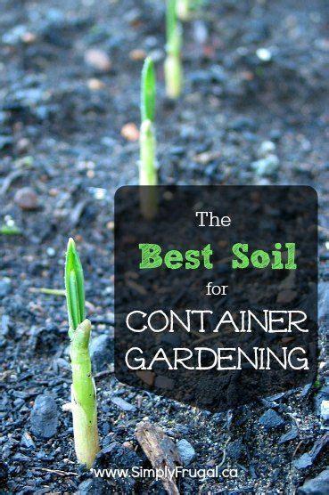 best vegetable garden soil 25 best ideas about container gardening on